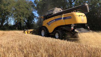 Harvest update: Majority harvested in east Cork