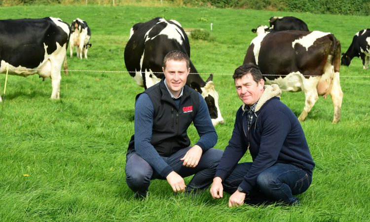 How this Tipperary-based farmer is maximising his milk yield this autumn