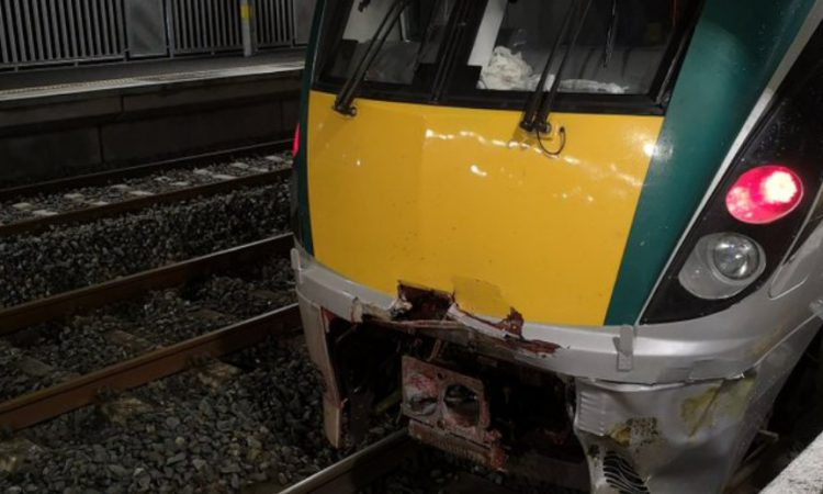 Lengthy delays caused following train collision with cow