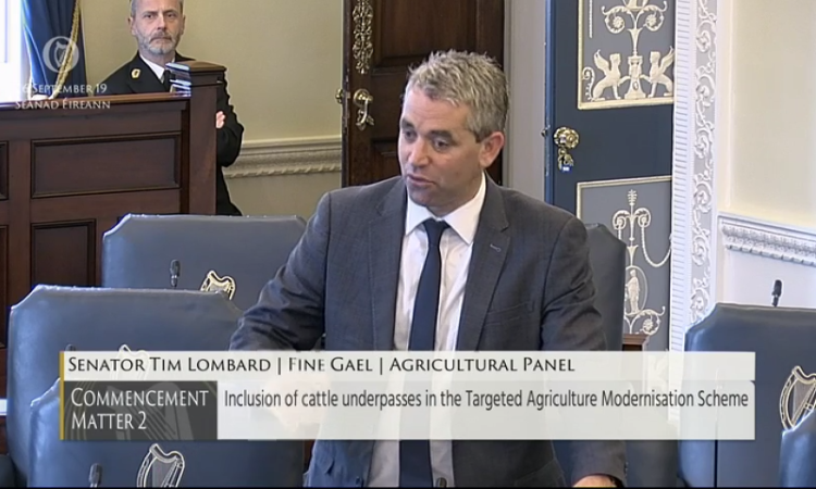 Lombard appointed Fine Gael agri spokesperson in Seanad