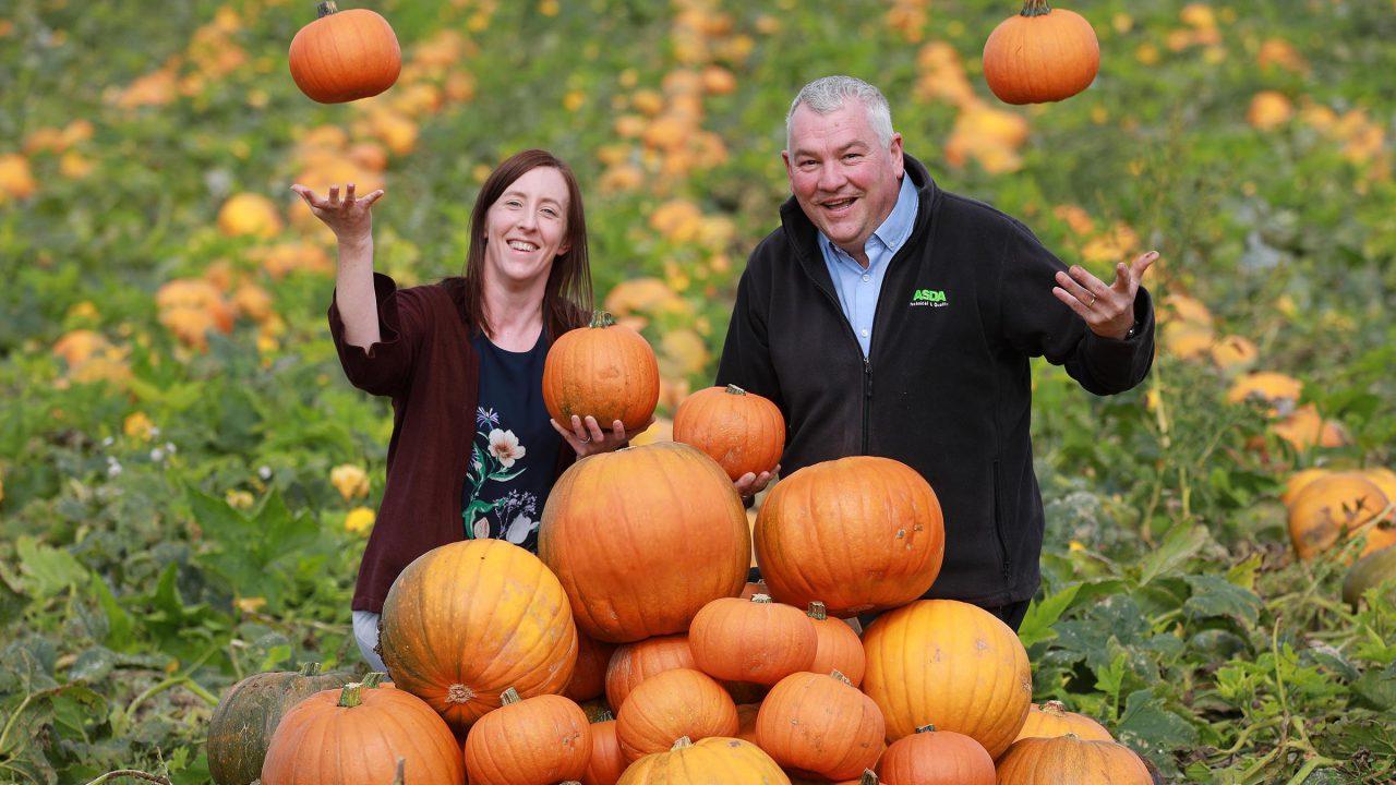 Gilfresh 'carves' the way as Asda's first NI-based pumpkin supplier