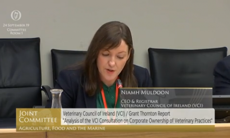 Veterinary Council has 'no legal authority' over ownership of practices