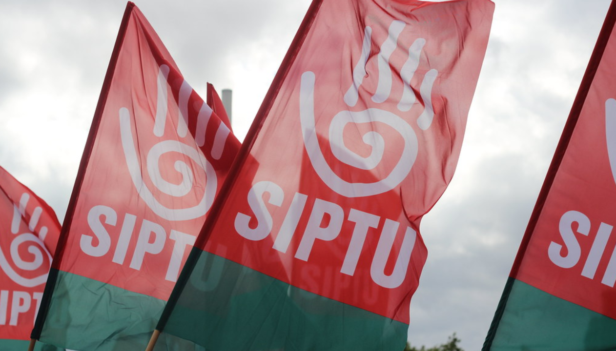 SIPTU seeking ban on agencies providing workers to meat industry