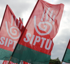 SIPTU seeking ban on agencies providing workers to meat industry