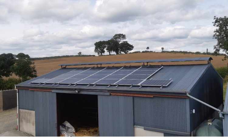 Survey results: Considerable interest in renewable energy on farms