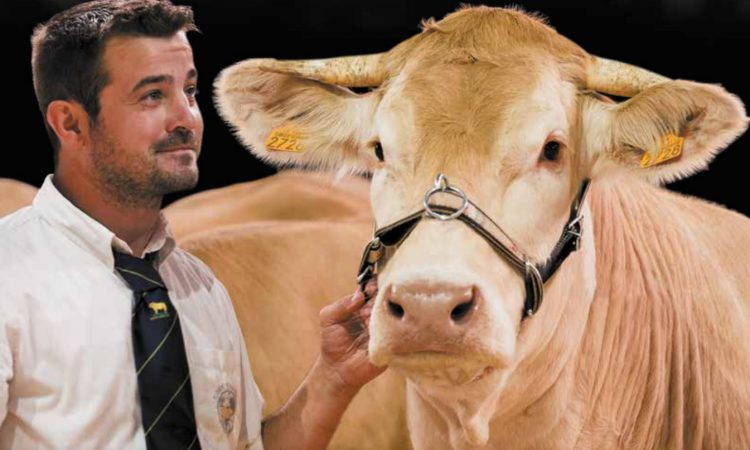 Sommet de l'Élevage: A not-to-be-missed event for any livestock farmer