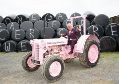 Donegal IFA to hold charity auction of donated livestock