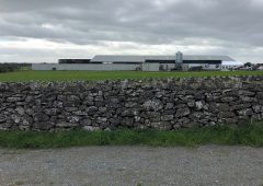 Dairy focus: 8 farmers and one leased farm in Co. Roscommon
