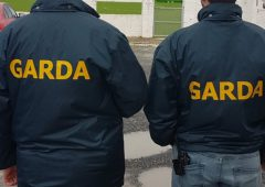 Garda Air Support called in on farm burglary with 4 arrested
