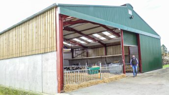Diary date: On-farm dairy calf-to-beef masterclass planned for Co. Kilkenny