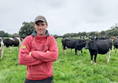 Save €581/week by keeping the cows at grass