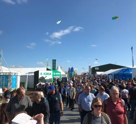 NPA cancels Ploughing 2021 exhibition due to Covid-19 uncertainty