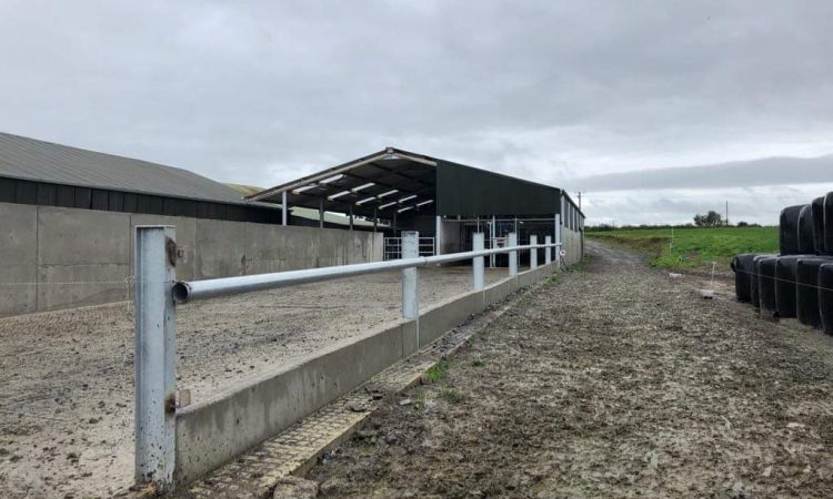 Buildings focus: Switching from a mixed enterprise to dairy farming