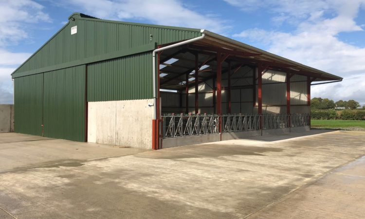 Buildings focus: Suckler and beef-finishing unit all under the one roof in Co. Kildare