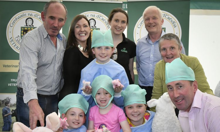 Strategy discussions to the fore for Veterinary Council's first 'Ploughing'