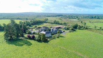 Video: Co. Longford residential farm on 192ac to go for public auction