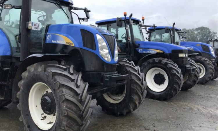 Auction report: Brace of 'blues' at 'on-farm' sale in Co. Kilkenny