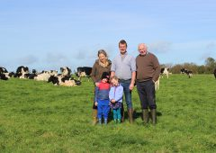 'It's like my cows can talk': Improving herd management on a Co. Cork dairy farm