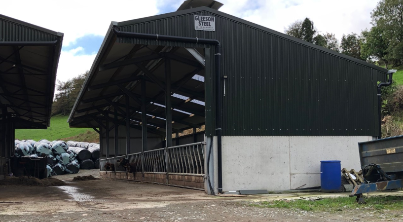 Buildings focus: Housing for 130 head of cattle in a 12-bay slatted unit