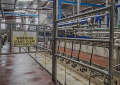 Co-ops should follow Aurivo's example and hold milk prices – IFA