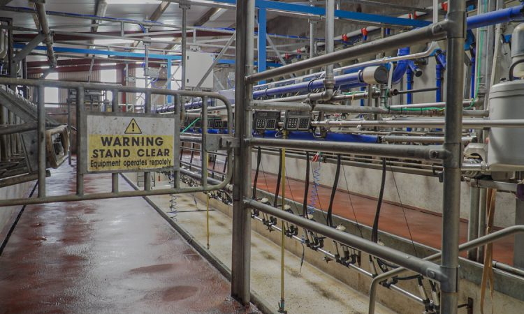 Ornua PPI 'a clear validation' for stopping slide in milk price