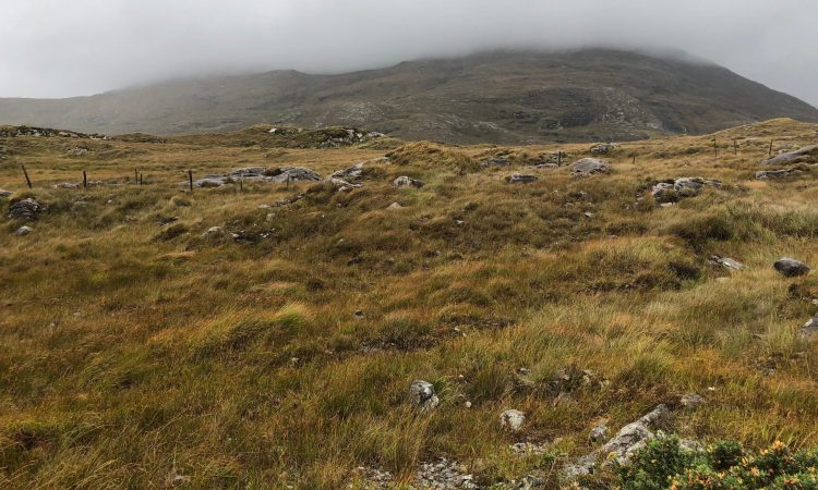 'So, if there is no chance of mining in Connemara, then why is there prospecting?'