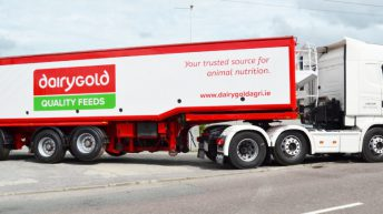 Dairygold stores switch to 'call and collect' only from today