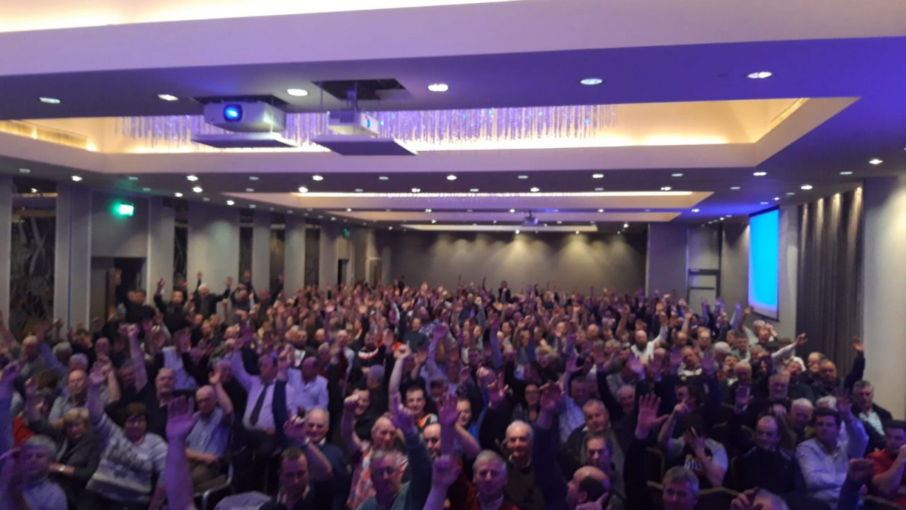 Crowds attend IFOI meeting in Athlone and see 3 mediators elected