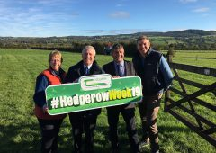 Contractor best practice urged at launch of Hedgerow Week 2019