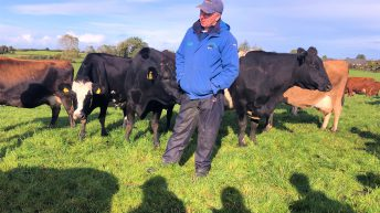 Dairy focus: A 'smooth transition' to once-a-day milking in Co. Galway