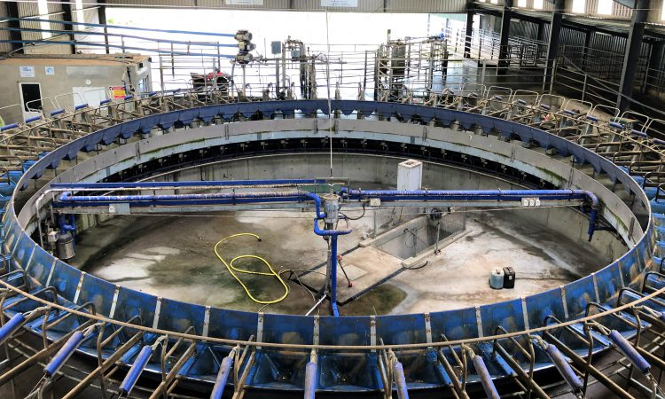 Dairy conference: 'Two-thirds of expansion has come from greater efficiency on farms'