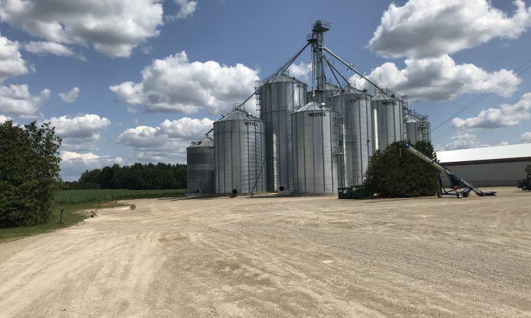 What's going to affect your 2019/2020 grain price?