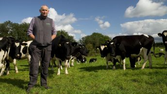 Cultivate loans: Co. Limerick dairy farmer finds 'no stress involved in it whatsoever'