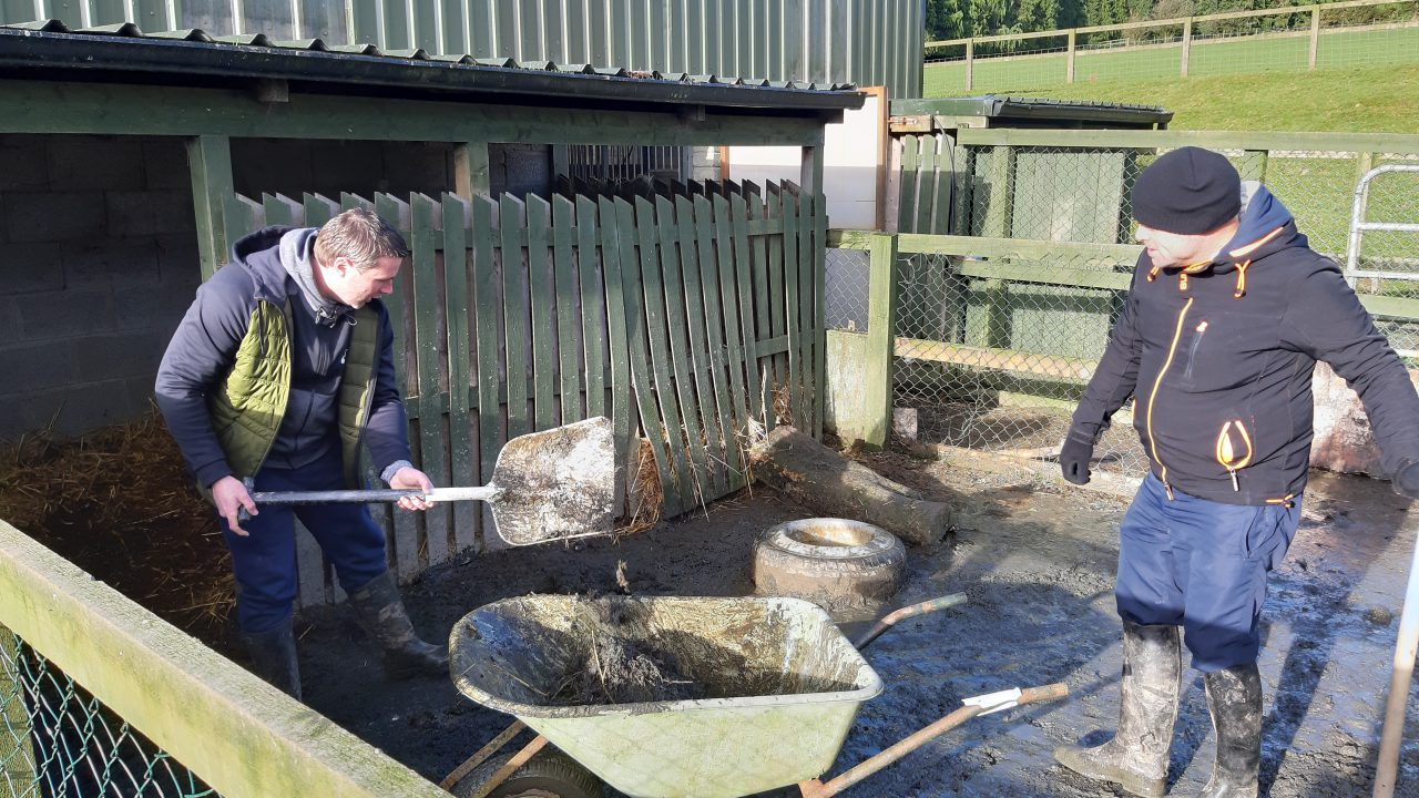 Social farming open day: 'A really powerful and positive initiative'