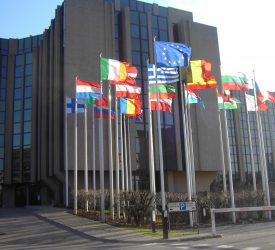 Ciaran Fitzgerald: 'Misleading' EU auditors' report on CAP climate spend