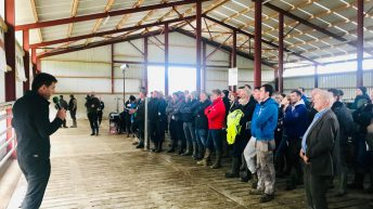 Huge crowds attend Teagasc Green Acres Calf to Beef farm walk in Co. Kilkenny