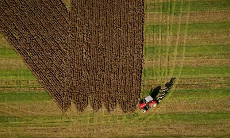 Giant anti-Brexit message ploughed into English field