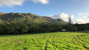 Sheep grassland management: Closing up paddocks for next spring a priority