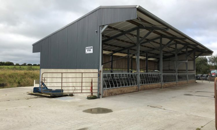 Buildings: Is your shed up to scratch for housing cattle for the winter?