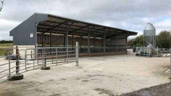 Buildings focus: Leaving no stone unturned in this beef-finishing unit in Co. Waterford