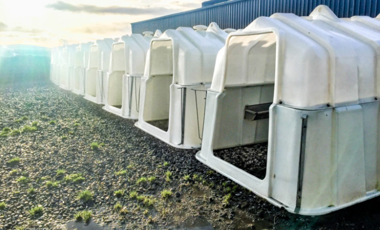 Alternative options to building a new calf shed