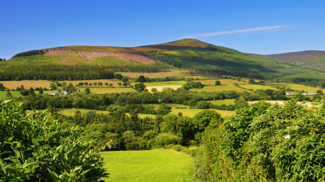Ciaran Fitzgerald: Policy for agriculture is 'better agreed than imposed'