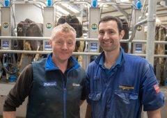 Interested in test driving a rotary milking parlour?