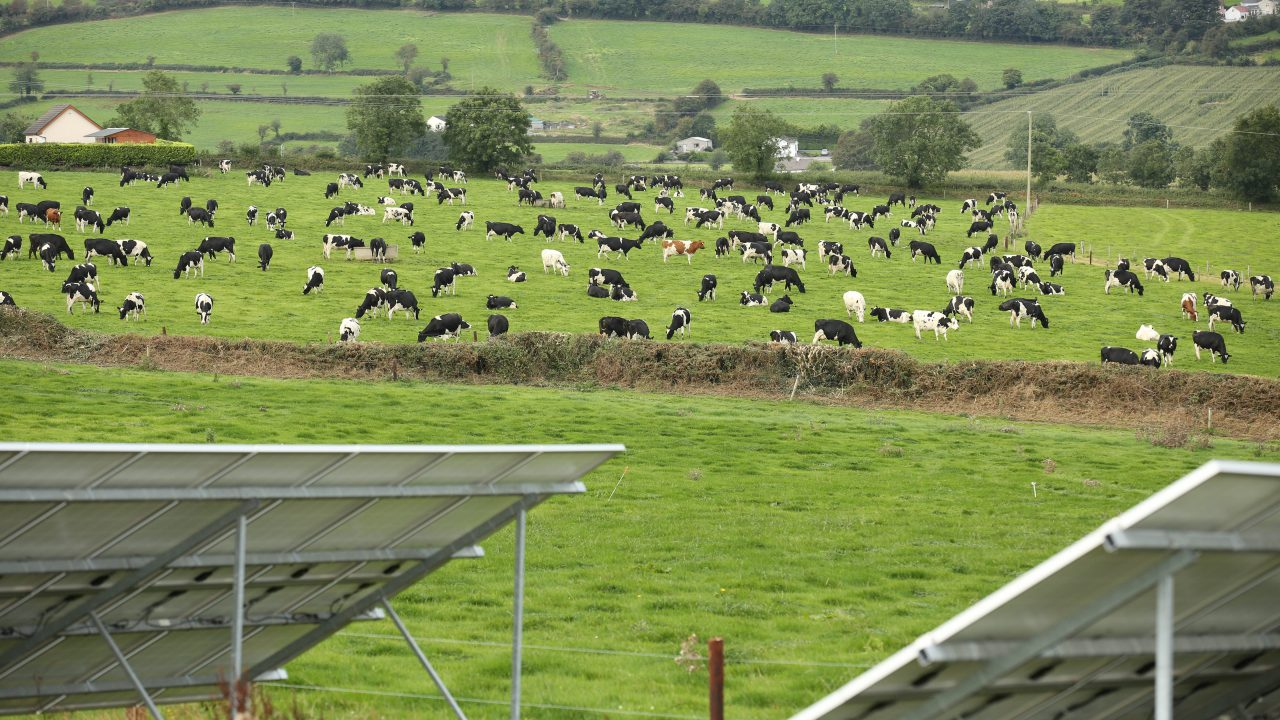 Glanbia Ireland and Teagasc unveil the new Open Source Future Farm Programme