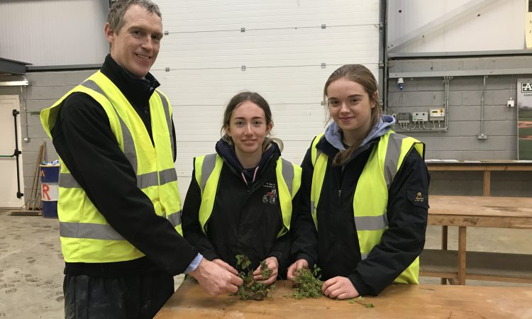 Look back: Plenty of young tillage farmers training up in Kildalton