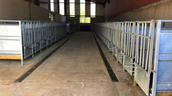 Dairy focus: Calf rearing to the highest of standards in Co. Cavan