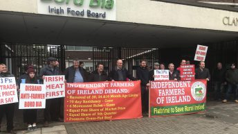 Protesters demonstrate outside Bord Bia buildings