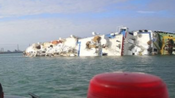 Ship carrying 14,600 sheep capsizes off Romanian coast