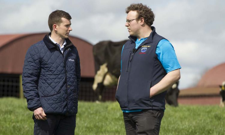The importance of a successful dairy dry cow programme