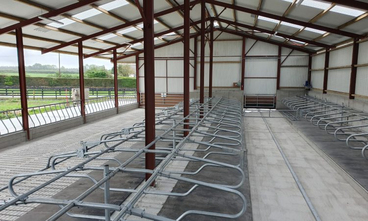 Buildings focus: Brand new 60-cubicle shed and feeding area/yard in Co. Tipperary